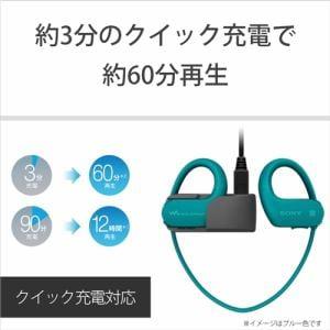 ソニー NW-WS623-G ウォークマン WS620シリーズ 4GB ライムグリーン