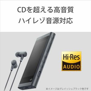 ソニー NW-A55HNLM ウォークマン ウォークマンA50シリーズ 16GB ムーンリットブルー