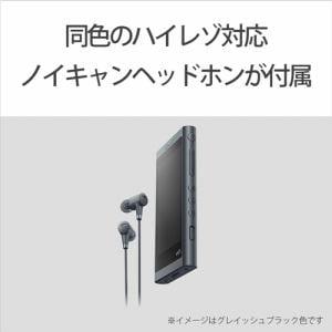 ソニー NW-A55HNRM ウォークマン ウォークマンA50シリーズ 16GB トワイライトレッド