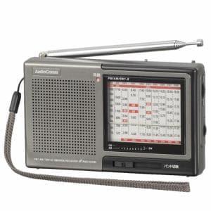 オーム電機 RAD-H310N 株・競馬たんぱラジオ ダークグレー
