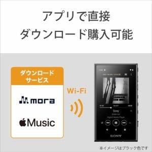 ウォークマン ソニー Aシリーズ  32GB NW-A106 RM ウォークマンAシリーズ レッド
