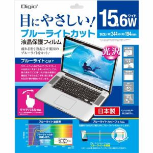 ナカバヤシ SF-FLGBK156W ロアス Digio2 液晶保護フィルム ブルーライトカット 15.6インチワイド対応 反射防止 グレー色タイプ