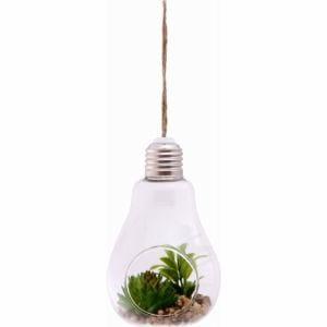 ガラス多肉植物 電球瓶 A 蓋付き グリーン