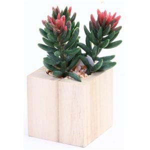 不二貿易 フェイクグリーン 人工多肉植物 木製ボックス E