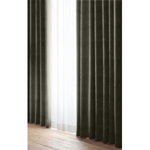 ドレープ遮光カーテン ホルン ダークブラウン 巾100cm×丈200cm 2枚入
