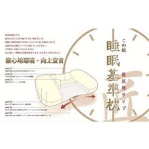 モリシタ 睡眠基準枕 匠(低反発タイプ/低め/ベージュ)