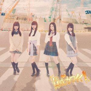 【CD】 賛成カワイイ!(初回限定盤D)(DVD付) / SKE48