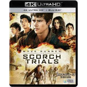 【4K ULTRA HD】メイズ・ランナー2:砂漠の迷宮(4K ULTRA HD+ブルーレイ)