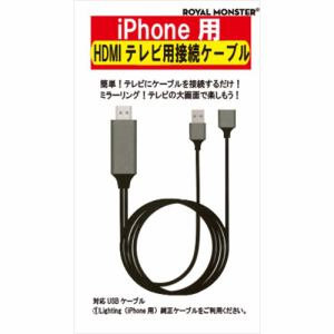 アール・エム RM2980 iPhone用HDMI変換ケーブル
