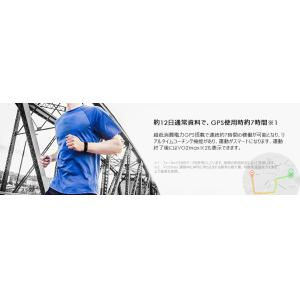 HUAWEI(ファーウェイ) Band 3 Pro/Quicksand Gold/55022979 BAND 3 PRO/QUICKSAND