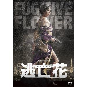 【DVD】 逃亡花 DVD-BOX