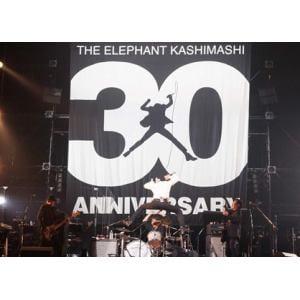 "<DVD> エレファントカシマシ / 30th ANNIVERSARY TOUR""THE FIGHTING MAN""FINALさいたまスーパーアリーナ(初回限定盤)"