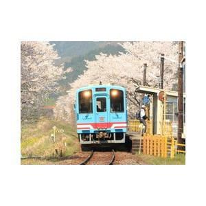 トミックス (N) 2641 樽見鉄道 ハイモ330-701形