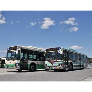 トミーテック (N) 全国バスコレクション 奈良交通新旧カラー2台セット
