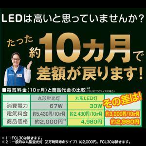 HERBRelax YDFCL62C・NCF 丸形LED灯 30形+32形シーリング器具向け