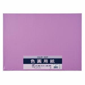 マルアイ Pエ-N87PU 色画用紙 N872 むらさき