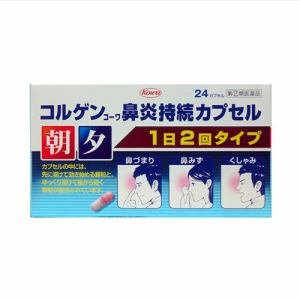 興和(Kowa) コルゲンコーワ鼻炎持続カプセル (24P) 【指定第2類医薬品】