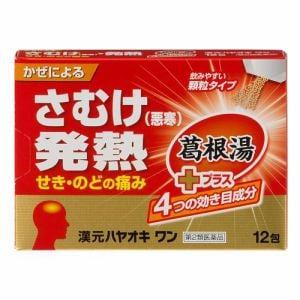 薬王製薬 漢元ハヤオキワン 12包 【第2類医薬品】