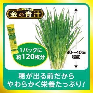 金の青汁 純国産大麦若葉粉末100%青汁 (3g×46包) 【健康食品】