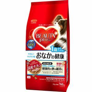 日本ペットフード ビューティープロ ドッグ 腸内環境の健康維持 1歳から 760g(95gx8袋)