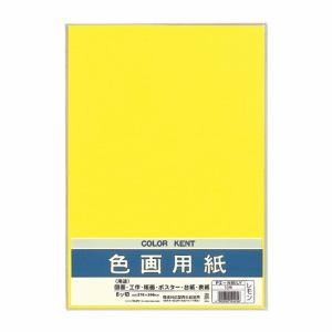 マルアイ Pエ-N85LY 色画用紙 N853 レモン
