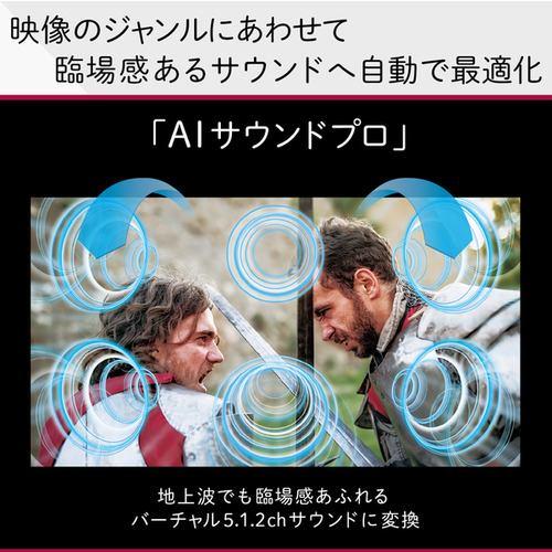 LG Electorinics Japan OLED65G1PJA 有機ELテレビ 65V型/4K対応/BS・CS 4Kチューナー内蔵/YouTube対応/Netflix対応 ブラック