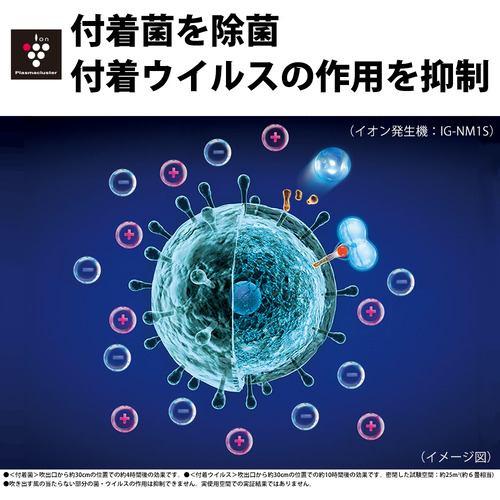シャープ IG-NM1S-B イオン発生機 プラズマクラスター ブラック系
