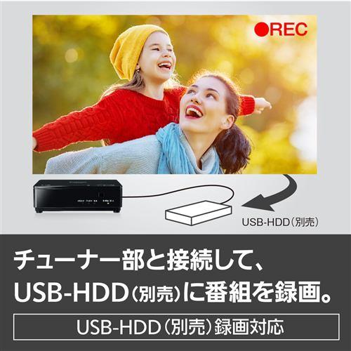 テレビ パナソニック ポータブル Panasonic UN-19CFB10-K ポータブルテレビ プライベートVIERA