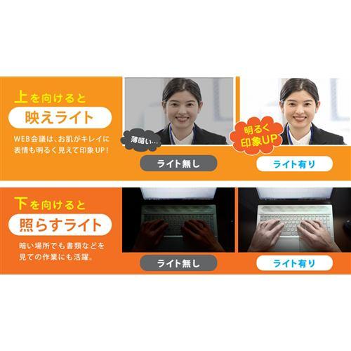 YAMADASELECT(ヤマダセレクト) YSKDK450H1 テレワーク用ライト「映えてらすライト」 ブラック