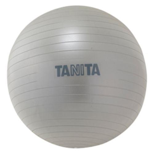 タニタ TS-962 ジムボール シルバー