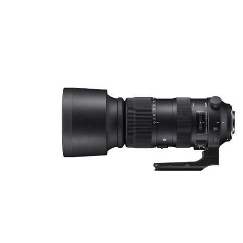 シグマ 60-600mm F4.5-6.3 DG OS HSM Sports カメラレンズ キヤノン用