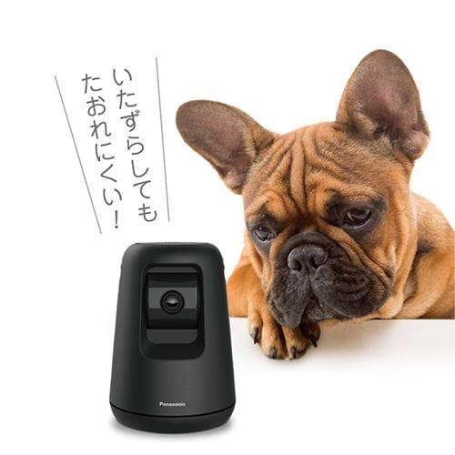 ペットカメラ パナソニック 防犯 カメラ KX-HDN215-K HDペットカメラ ブラック