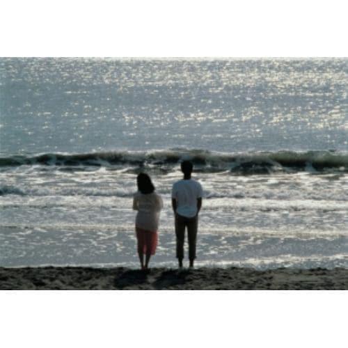 【DVD】稲村ジェーン(通常版)