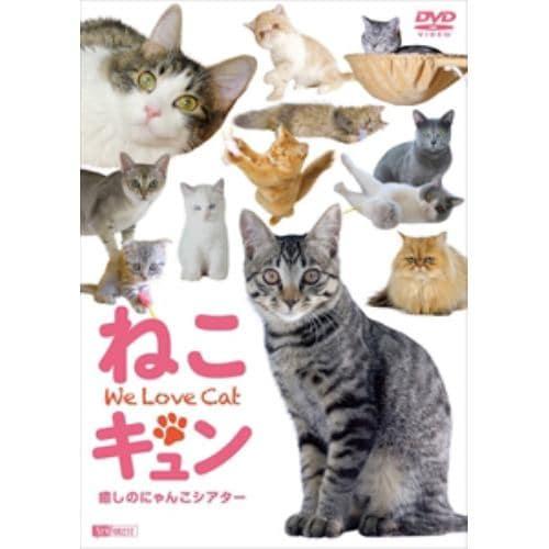 【DVD】 ねこキュン 癒しのにゃんこシアター We Love Cat